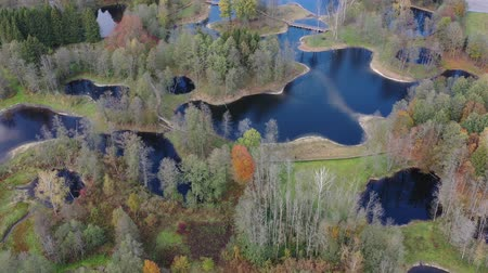 Литва : Autumn time small lakes and groves landscape in nature park, aerial view Стоковые видеозаписи