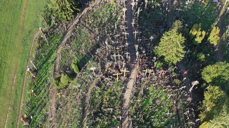 crucifixo : Lithuanian pilgrimage site iconic hill of crosses near Siauliai, aerial