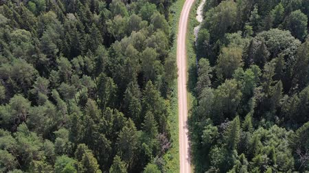 deforestation : Summer time forest and gravel road, aerial view Stock Footage