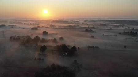 Литва : Morning landscape with golden fog,  groves and fields  after sunrise, aerial view