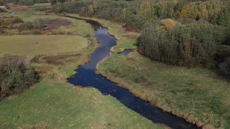 Drone fly above autumn river bends and groves, aerial