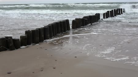 baltské moře : Old wooden posts jetty piles  on  sea beach and waves, zoom out