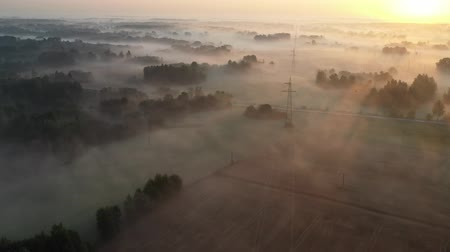 litvánia : Morning landscape with magical golden fog, groves and fields  after sunrise, aerial view