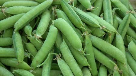 pea pods : Rotating fresh green pea pods food background