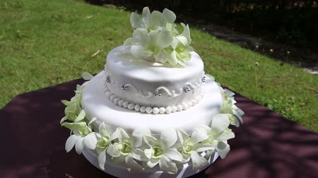 wedding cake : drawing bringing nearer of the panorama of the wedding cake decorated with orchid and beads with green grass on background Stock Footage
