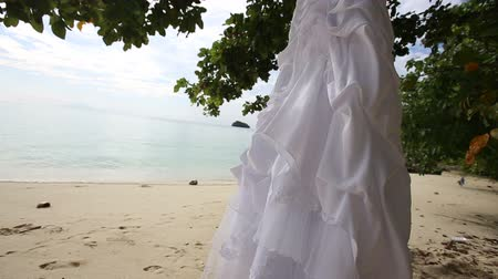 подвенечное платье : white wedding dress hangs on clothes hanger on green tree at sand beach against tropical island