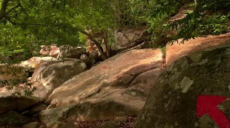 difficults : closeup camera moves according to large red arrows for hiking on round brown boulders in tropical natural park Stock Footage