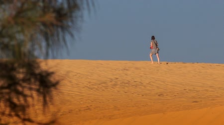 crest dune : MUI NE, BINH THUAN  VIETNAM - MARCH 19, 2016: Tourist girl in frock walks along white sand dune crest on skyline against blue sky plant branch on foreground on March 19 in Mui ne Stock Footage
