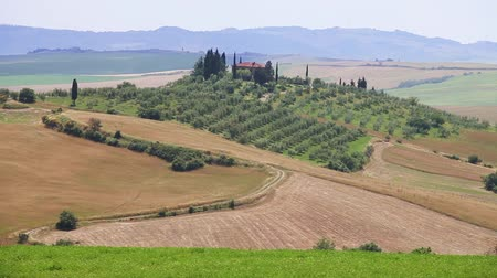toscana : Tuscany Landscape. Suburbs of Castiglione dOrcia town, Italy Vídeos