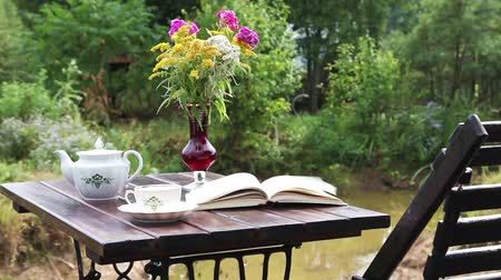 стулья : Chaise-longue with a tea table and a book on it, outdoors Стоковые видеозаписи