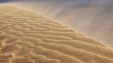 Stormy wind blowing sand over rim of scenic patterned dunes in the vast hot desert