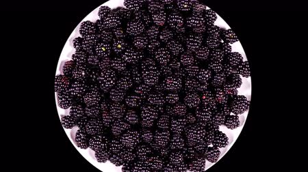 antioxidant : Plate with blackberry rotating on a black background close-up