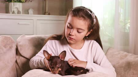 szemfog : Lovely blonde nine years old girl hugging a Toy Terrier puppy on the sofa at home Stock mozgókép