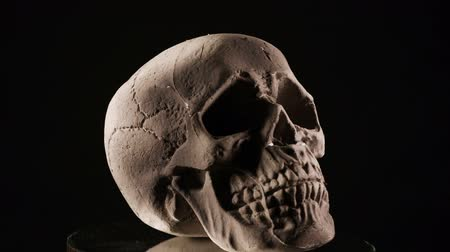 A human skull rotating on a black background