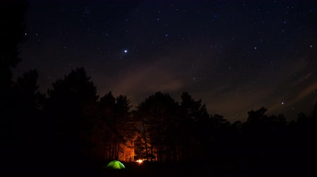 uzun : Tourist camp in the forest under a starry sky.Timelapse.