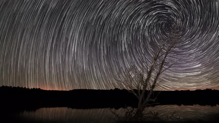trilha : Beautiful Star Trails Spiral Star trails with reflection on Lake. Lonely old tree Vídeos