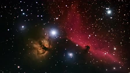 galaxie : Deep space beautiful night sky. Horsehead Nebula in the constellation Orion.