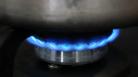 burning gas burner on the stove closeup