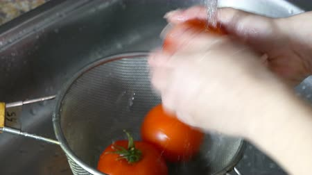 woman washes fresh tomatoes under the tap Dostupné videozáznamy