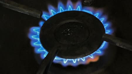 gas hob : burning gas burner on the stove closeup