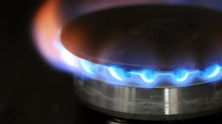 inflamável : burning gas burner on the stove closeup