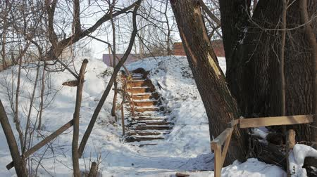fantasy fantastic : Old staircase in the winter fairy forest