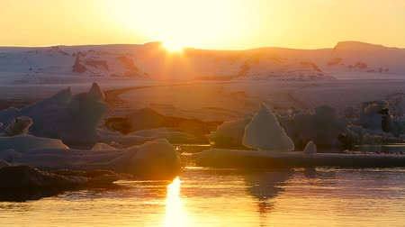 climate : Icefjord landscape iceberg climate change floating glacial sunlight reflection Stock Footage