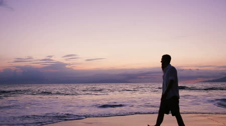 медовый месяц : Honeymoon Couple Silhouette on the Beach in Hawaii at Sunset Стоковые видеозаписи