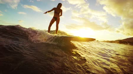 longboard : Beautiful Young Woman Surfs a Longboard on an Ocean Wave in Slow MOtionThrough a Golden Sunset with Lens Flares in Hawaii