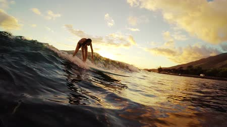 серфер : Young Attractive Girl Surfs Towards the Camera on a Longboard during a Golden Sunset in Hawaii.