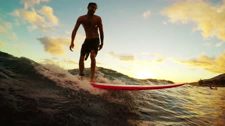 vodní sporty : Attractive Young Hawaiian Surfer Rides a Longboard On a Blue Ocean Wave Through a Golden Sunset in Slow Motion