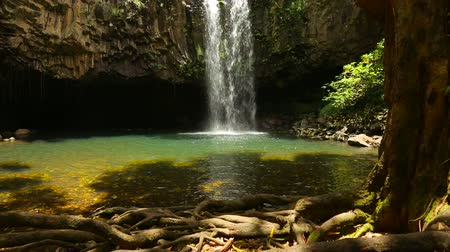 kapradina : Beautiful Tropical Waterfall in Hawaii with Steadicam Dostupné videozáznamy