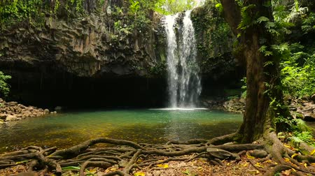 kapradina : Slow Approach To Tropical Hawaiian Waterfall and Swimming Hole with Steadicam