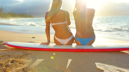 lifestyle : Surfer girls looking at ocean beach sunset. Beautiful sexy female bikini women looking at water sitting on surfboard having fun living healthy active lifestyle. Water sports with models. Lens Flares.--