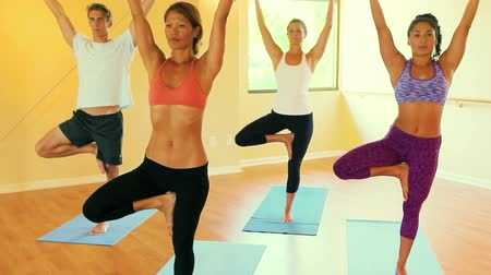 esneme : Group of People Relaxing and Doing Yoga. Wellness and Healthy Lifestyle. Steadicam Shot. Tree Pose.