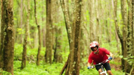 lifestyle : Mountain Biking Forest Trail. Outdoor Sports Healthy Lifestyle. Young Fit Man in Red Shirt Rushes Down Mountain Bike Trail Through a Lush Forest. Slow Pan Shot with Steadicam. Summer Extreme Sports.