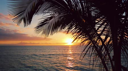 имущество : Beauitful Seascape Sunset over the Hawaiian Islands. Backyard Oceanfront Real Estate. Maui