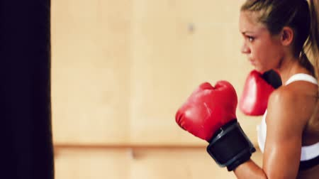 tornaterem : Beautiful Young Female Athlete Exercising for Self Defense with Boxing Gloves and Body Bag in Gym. Athletic Woman Fitness Training in Gym. Dramatic Lighting and Tough Tone.