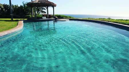 properties : Luxury Real Estate Back Yard Pool Area with Ocean View in Maui Hawaii