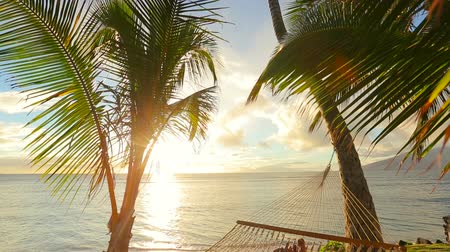 sunset sea : Romantic couple relaxing in tropical hammock at sunset. Summer Luxury Vacation