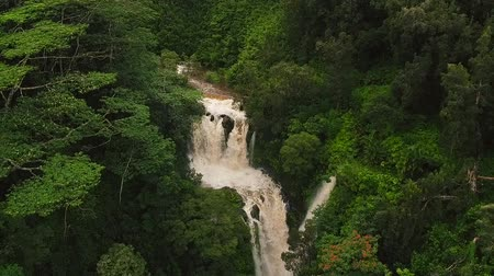 düşük : Amazing Powerful Waterfall in Tropical Jungle. Aerial View Revealing Rushing Waterfall in Rain Forest. Stok Video