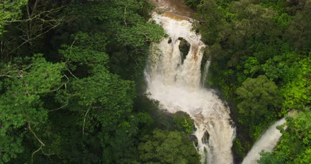 legyek : Amazing Powerful Waterfall in Tropical Jungle. Aerial View Flying Over Rushing Waterfall in Rain Forest. Stock mozgókép