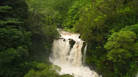 powódź : Amazing Powerful Waterfall in Tropical Jungle. Slow Motion Aerial View Flying Over Rushing Waterfall in Rain Forest.