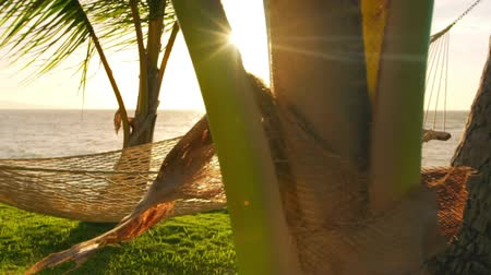 гамак : Hammock and Palm Trees at Sunset SLOW MOTION. Luxury Vacation Relaxation Lifestyle. Hammock Swinging on the Wind Between Two Palm Trees. Backyard Oceanfront Real Estate. Maui Стоковые видеозаписи