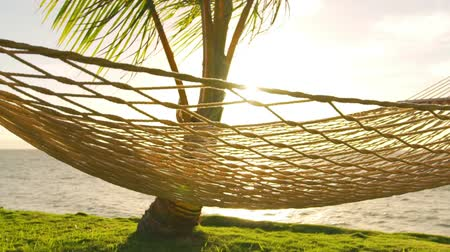 lifestyle : Hammock and Palm Trees at Sunset SLOW MOTION. Luxury Vacation Relaxation Lifestyle. Hammock Swinging on the Wind Between Two Palm Trees. Backyard Oceanfront Real Estate. Maui Wideo