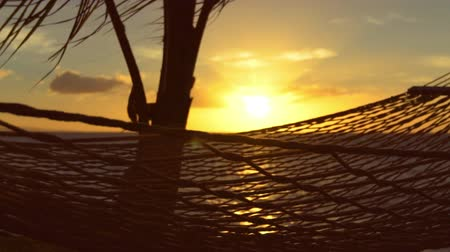 cisza : Hammock and Palm Trees at Sunset SLOW MOTION. Luxury Vacation Relaxation Lifestyle. Hammock Swinging on the Wind Between Two Palm Trees. Backyard Oceanfront Real Estate. Maui Wideo