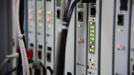 network server : Blinking of Networking Telecommunication LED status in data center