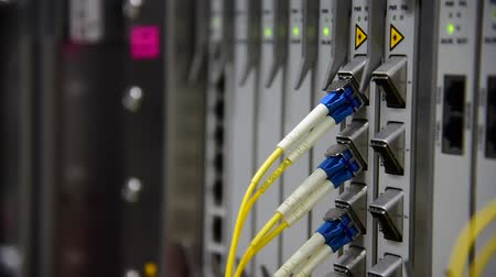 Networking Telecommunication fiber optics cable patch cord connected and blinking of led status in data center