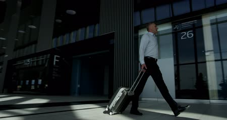 Business people in formal clothes walking in airport terminal with suitcases