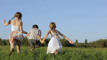 executar : Three happy children playing in the field at the day time. Kid having fun outdoors. Concept of happy game. Stock Footage